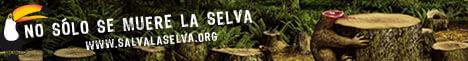 Banner: No solo muere la Selva