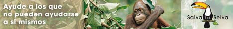 Banner: Regale selva tropical