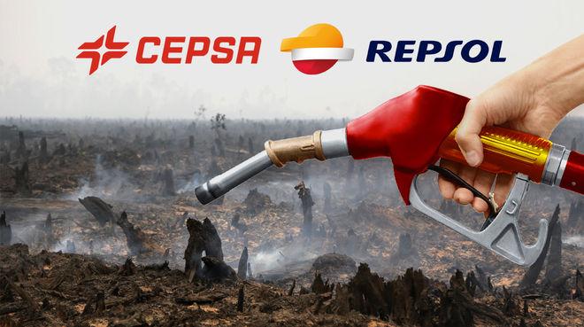 España: el aceite de palma para biocombustible destruye la selva