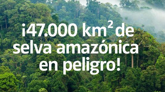 ¡47.000 km² de selva amazónica en peligro!