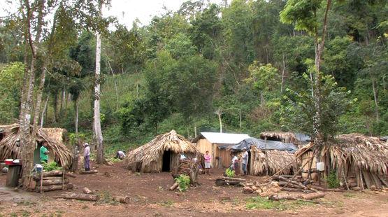Una comunidad de refugiados en la selva