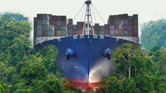 Nicaragua barco a través de la selva